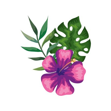 natural flower of purple color with branch and leafs vector illustration design