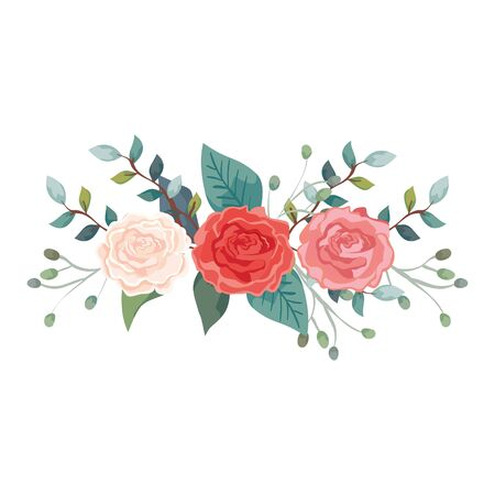 cute roses with branches and leafs isolated icon vector illustration design Stock Vector - 136882497