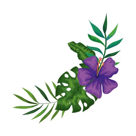 flower of purple color with branches and leafs vector illustration design
