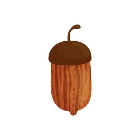 Autumn acorn design, season nature ornament garden decoration and botany theme Vector illustration