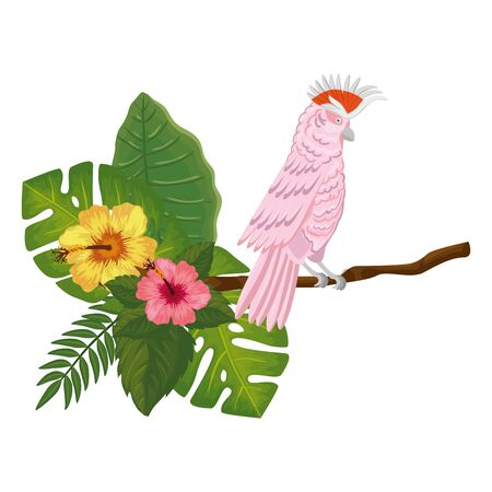 parrot pink in branch with flowers and leafs vector illustration design