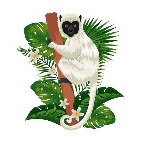 tropical capuchin monkey with leafs palms vector illustration design Çizim