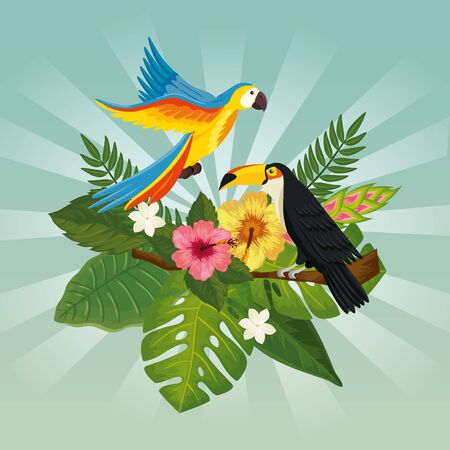 parrot with toucan and leafs nature vector illustration design