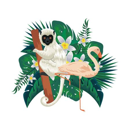 tropical capuchin monkey and flemish bird with leafs palms vector illustration design