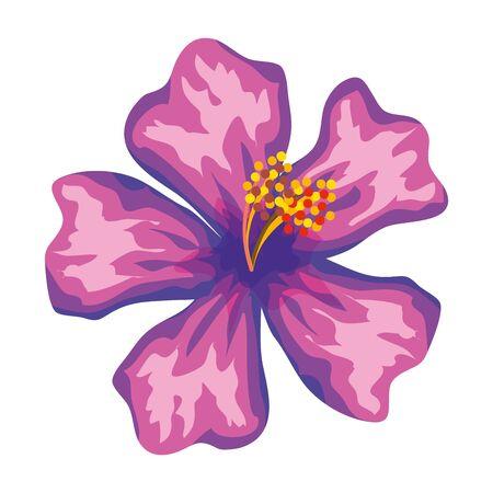 Belle fleur icône tropicale exotique conception d'illustration vectorielle