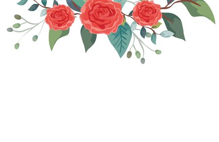 cute roses with branches and leafs isolated icon vector illustration design Illustration