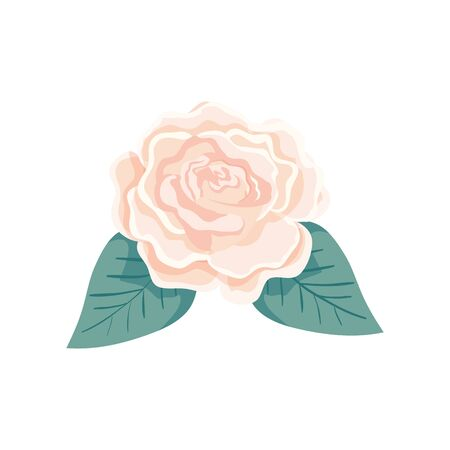 cute rose with leafs natural isolated icon vector illustration design Illustration
