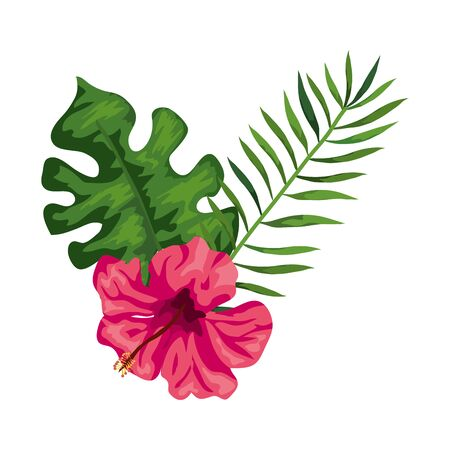 natural flower of pink color with branch and leafs vector illustration design