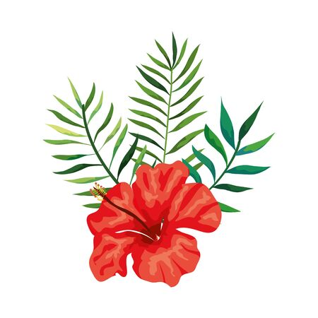 natural flower of red color with branches and leafs vector illustration design  イラスト・ベクター素材