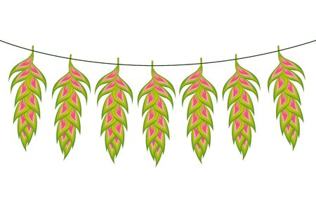 flowers heliconias hanging isolated icon vector illustration design