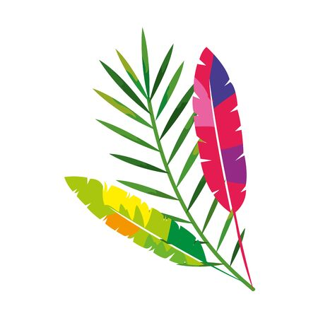exotic feathers with tropical leafs isolated icon vector illustration design