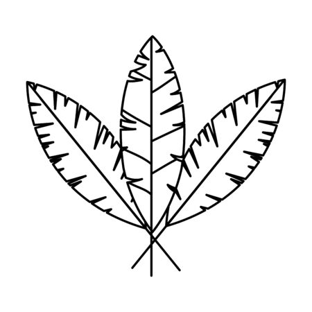 set of feathers bird isolated icon vector illustration design 向量圖像
