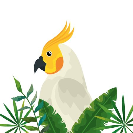 parrot with tropical leafs isolated icon vector illustration design