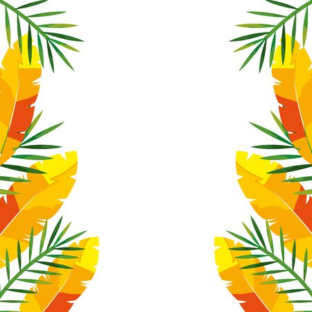 frame with exotic feathers and tropical leafs vector illustration design 向量圖像