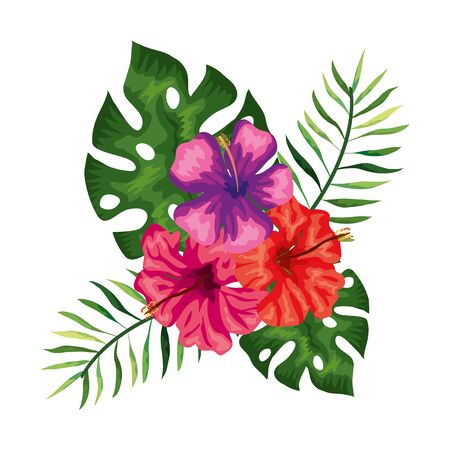 flowers with branches and leafs nature vector illustration design