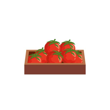 tomatoes vegetables in wooden box isolated icon vector illustration design