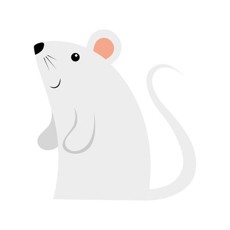 cute rodent rat isolated icon vector illustration design