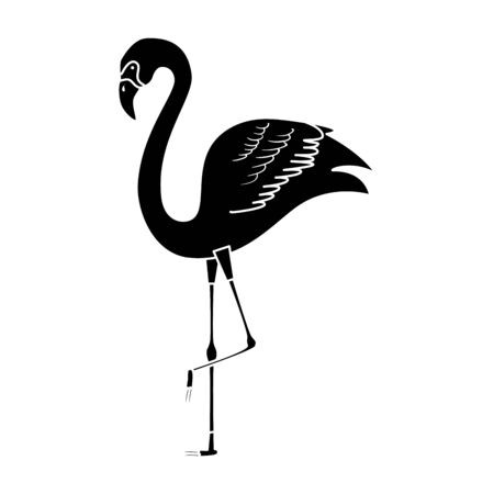 silhouette of flamingo animal exotic isolated icon vector illustration design