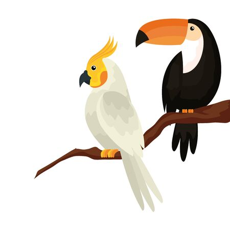 parrot with toucan in tree branch isolated icon vector illustration design