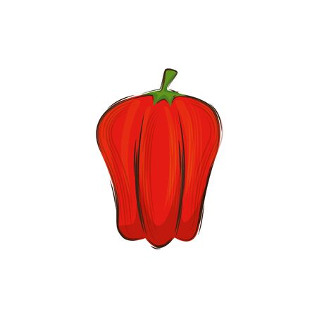 pepper fresh vegetable isolated icon vector illustration design