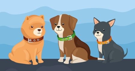 group of little dogs animals vector illustration design
