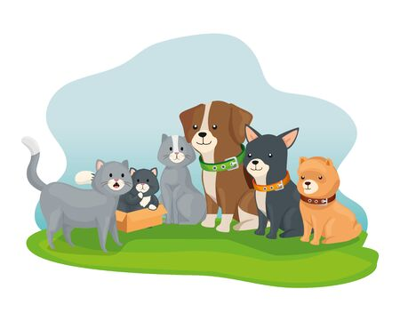 group of little dogs and cats vector illustration design