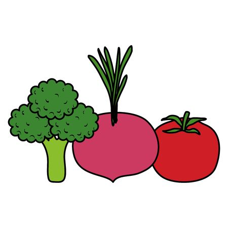 fresh vegetables healthy food vector illustration design