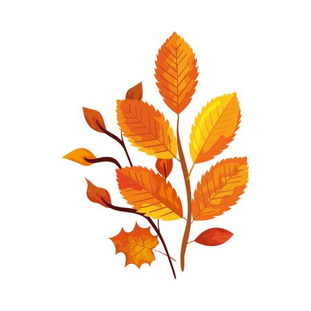 season autumn branches with leaves vector illustration design