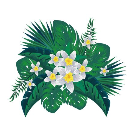 exotic tropical flowers and leaves decoration vector illustration design