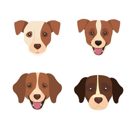 group of head dogs animals icons vector illustration design