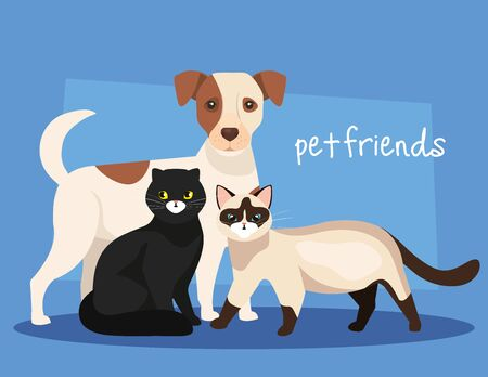 group of dog with cats icons vector illustration design