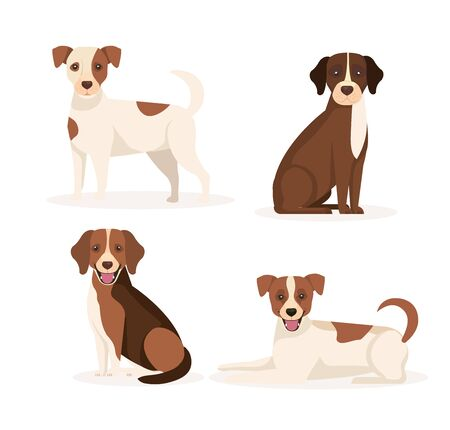 group of dogs animals icons vector illustration design Ilustracja
