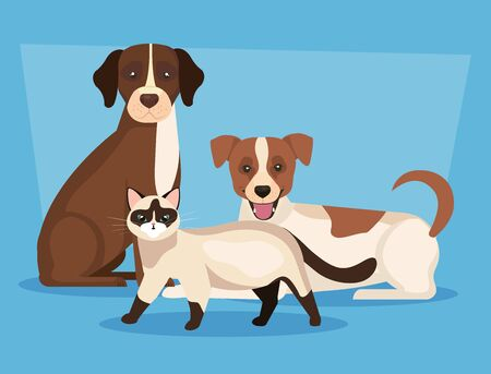 group of dogs with cat icons vector illustration design