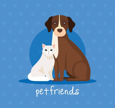 cute cat with dog animals vector illustration design