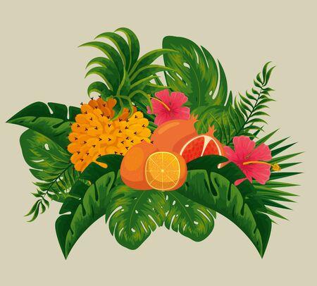 pineapple with orange and pomegranate fruits in the leaves vector illustration Ilustração