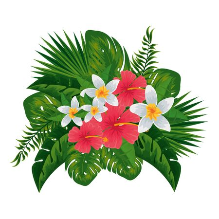 exotic tropical flowers and leafs decoration vector illustration design Illustration