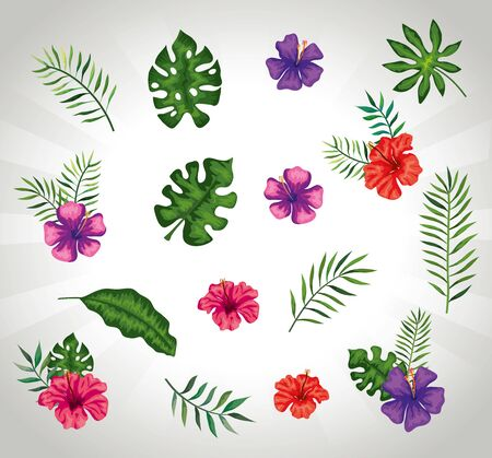 background of flowers with branches and leaves vector illustration design