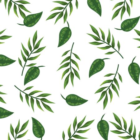 ecology leaves plants and branches nature pattern vector illustration design Ilustracja