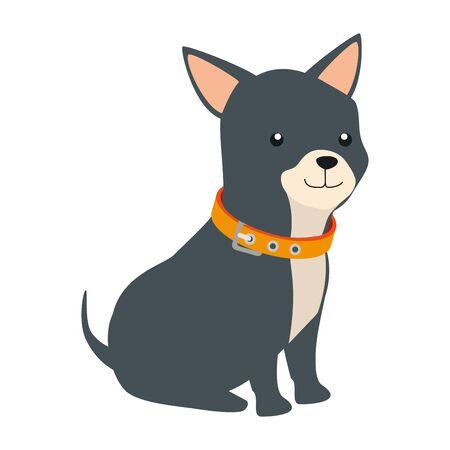 cute dog animal isolated icon vector illustration design