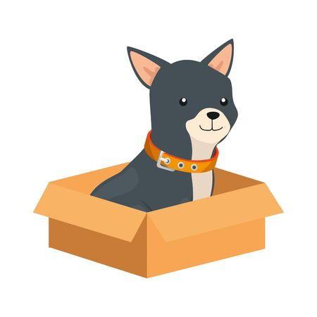 cute dog in box carton isolated icon vector illustration design