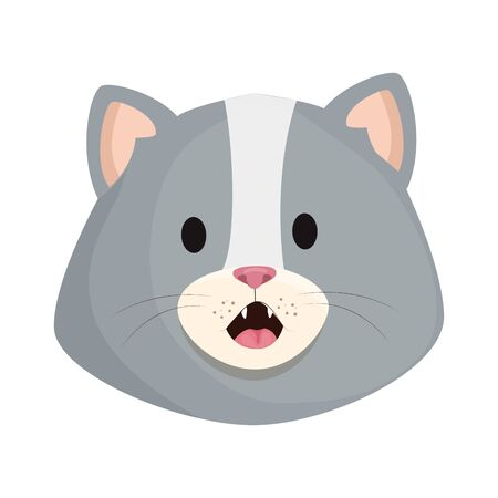 face of cute little cat animal icon vector illustration design