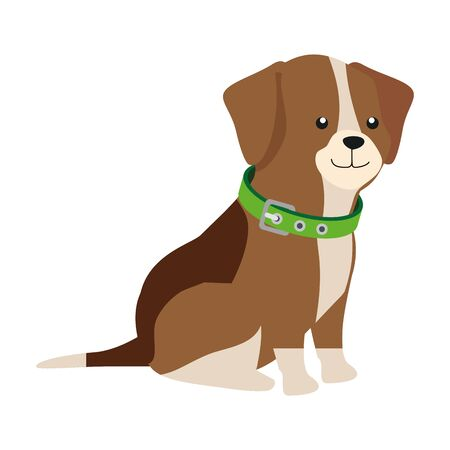 cute dog animal isolated icon vector illustration design