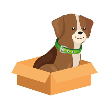 cute dog in box carton isolated icon vector illustration design