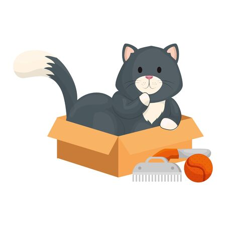 cute little with comb and ball toy vector illustration design Ilustracja