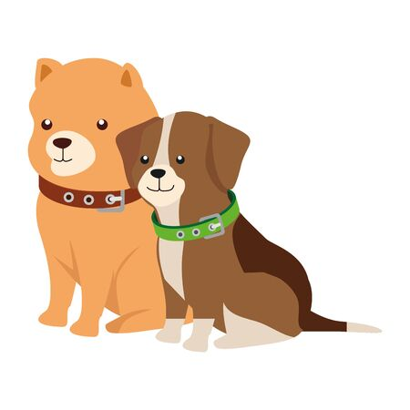cute dogs animals isolated icon vector illustration design
