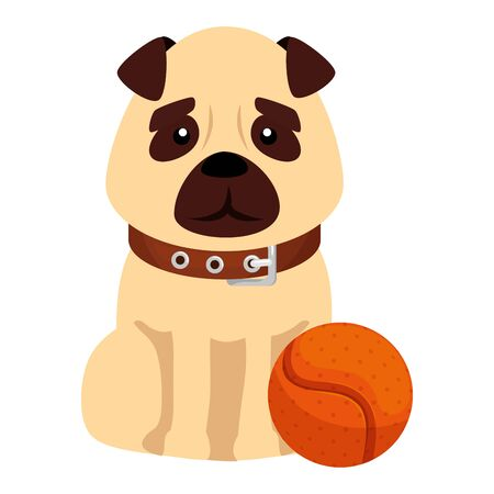 cute dog with ball toy isolated icon vector illustration design 일러스트