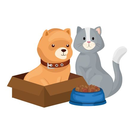cute dog in box carton and cat with dish food vector illustration design