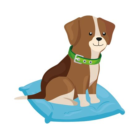 cute dog in cushion isolated icon vector illustration design