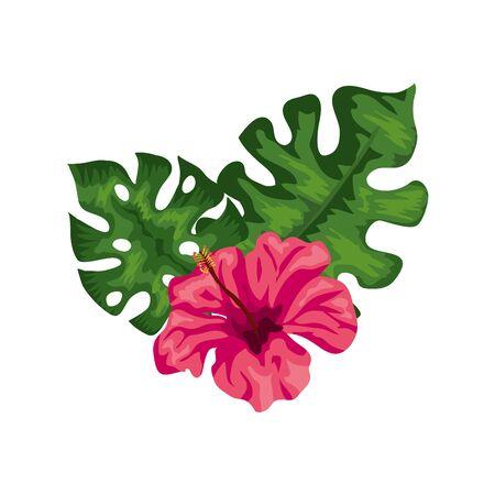 natural flower of pink color with leafs tropical vector illustration design Ilustração