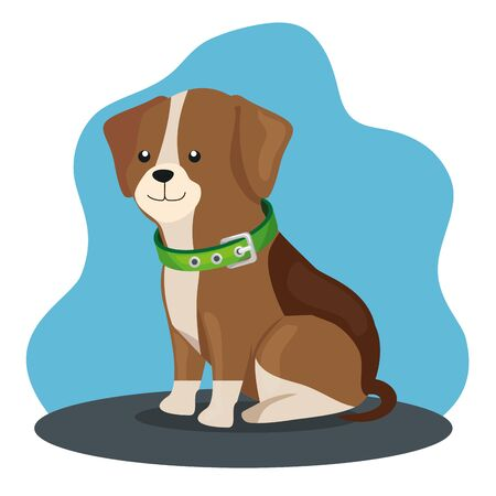 cute dog animal with collar icon vector illustration design